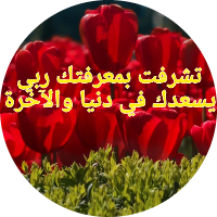 Saber Ramdani