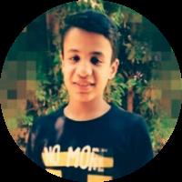 محمود الحماقى