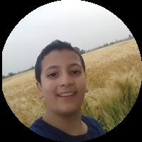 Abdel hafez Tareef