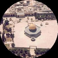 طارق أبوزيد